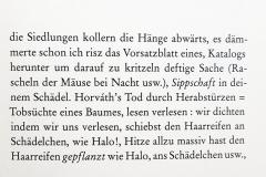 Mayröcker-lesen